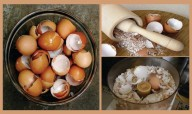 After Reading This You Will Never Throw Away Eggshells!