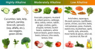 The MOST EFFECTIVE Alkalizing Foods To Reset Alkaline Balance And Prevent Cancer