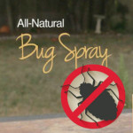 Use These Effective Solutions To Make Your House Bug-Free (Without Chemicals)